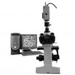 DMM-400C  电脑型倒置金相显微镜